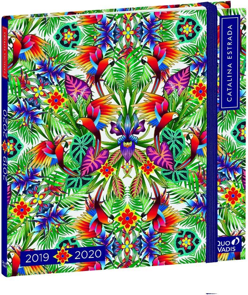 House of Card /& ‿Lot de 10 feuilles de papier /à paillettes Bleu Format A3 240 g//m/²