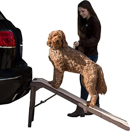 Pet Gear Free Standing Pet Ramp for Cats and Dogs - Best Design Technology