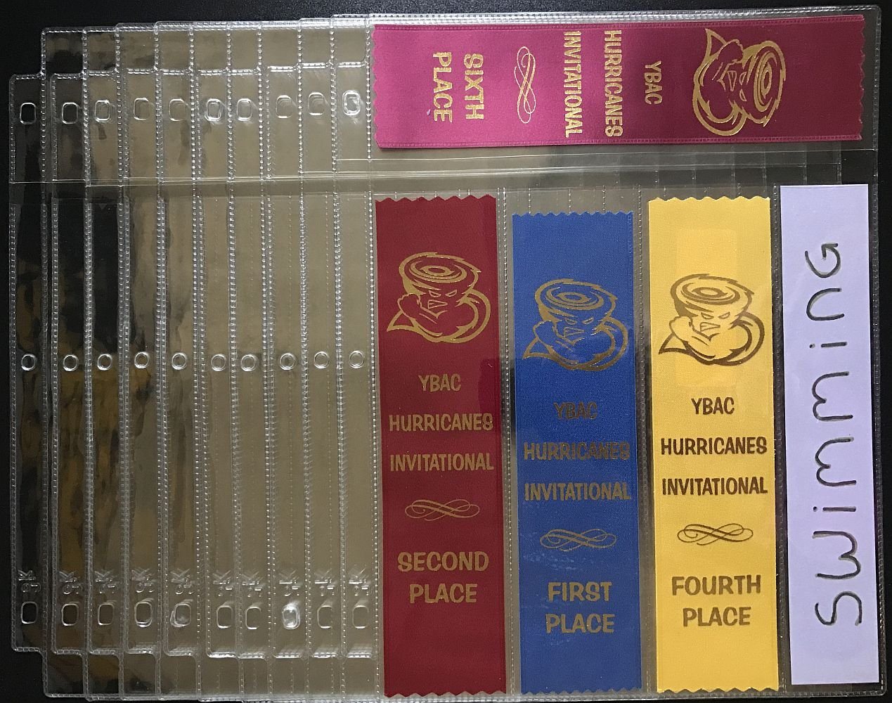 Track and Field 10 Sheets 45 pc store Gymnastics Soccer dog shows and many more award ribbons neatly by GiftKoncepts with BONUS GIFTS Award Ribbon Organizer DIY KIT
