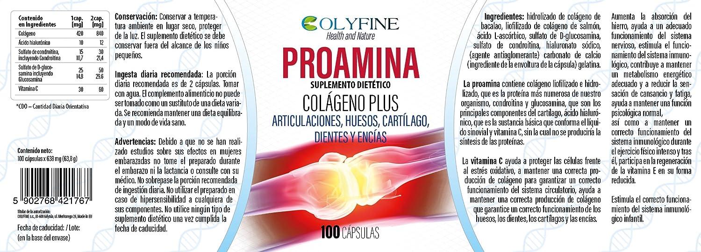 Proamina Colágeno Plus con Acido Hialurónico, Vitamina C y Condroitina+Glucosamina, 100 cápsulas de 630mg: Amazon.es: Salud y cuidado personal