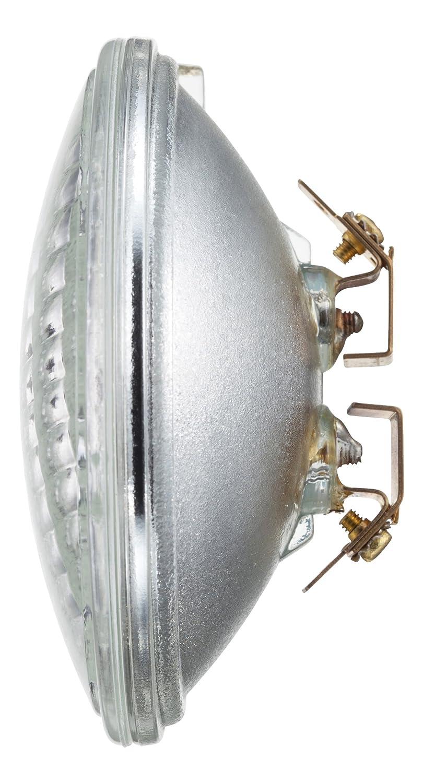 philips landscape lighting 36watt par36 flood light 12volt base light bulb halogen bulbs amazoncom - Volt Landscape Lighting