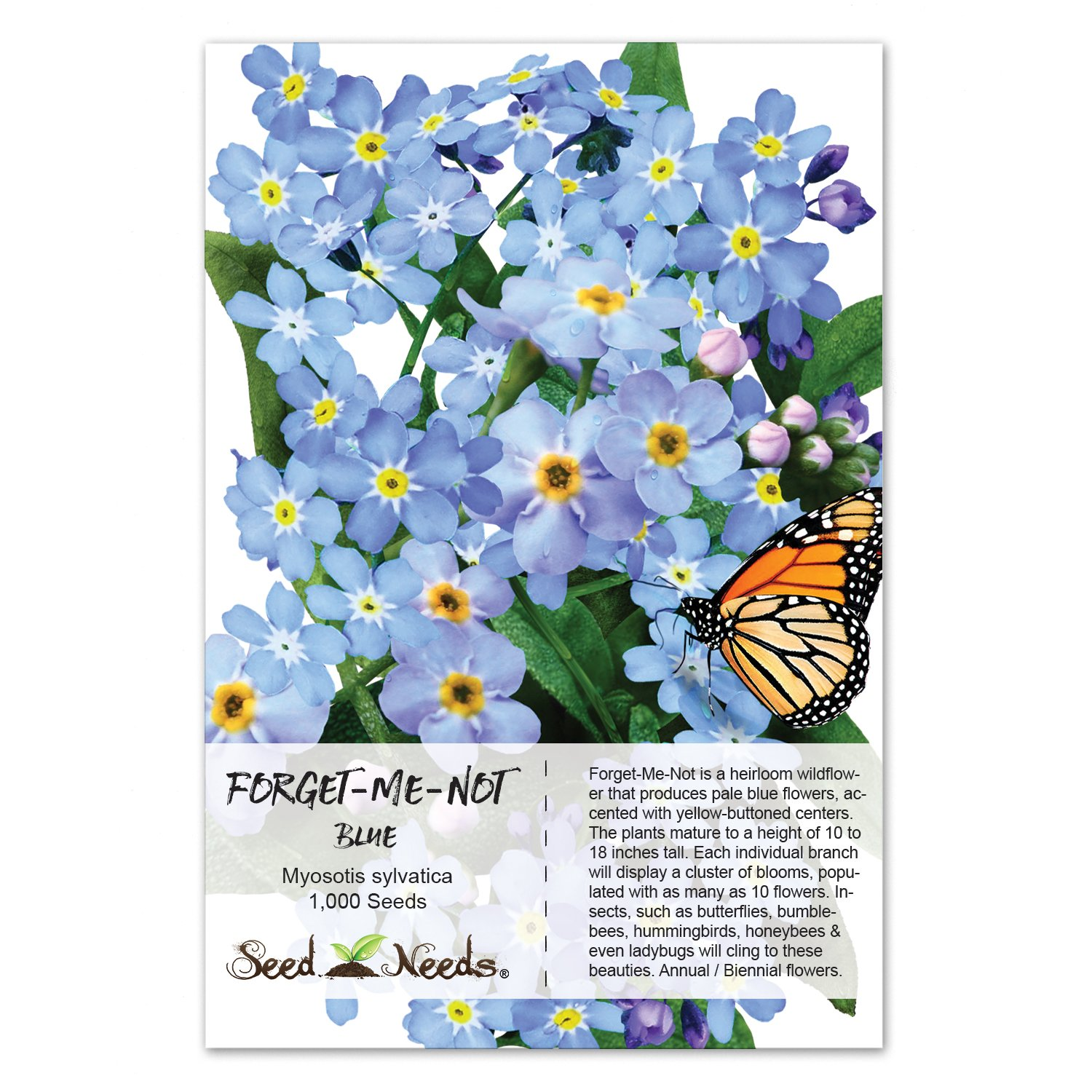 Amazon Package Of 1 000 Seeds Blue Forget Me Not Myosotis