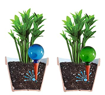 Paquete de 4 globos grandes de riego PlantpalNuevos colores claros azul y verde, visión clara del nivel del agua.Autorriego para plantas en las vacaciones ...