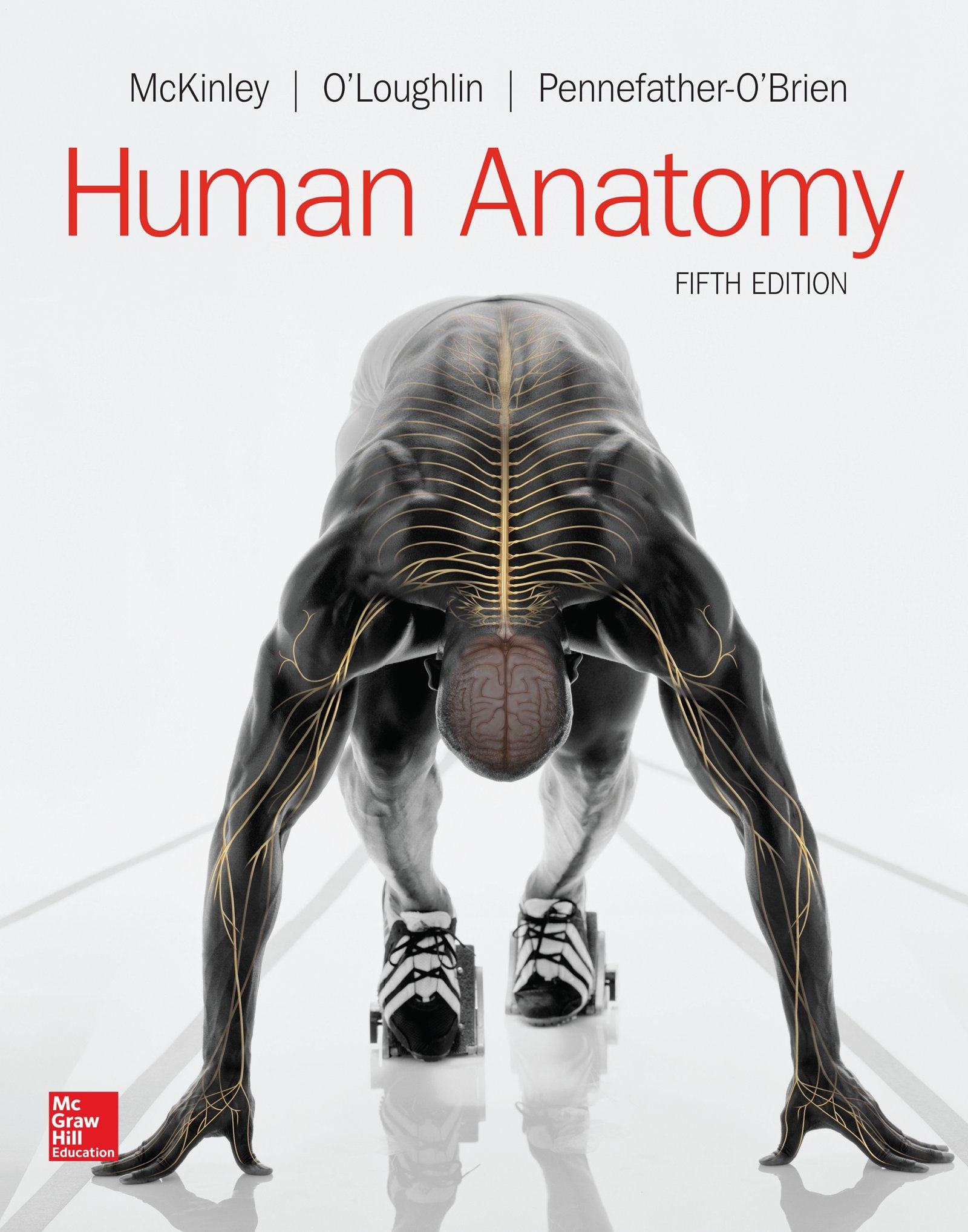 Looseleaf For Human Anatomy Michael Mckinley Dr Valerie O
