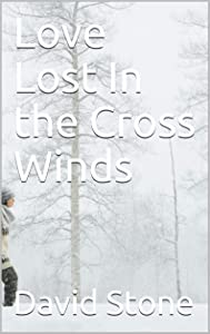 Love Lost In the Cross Winds (Cheap Short Stories Book 7)