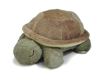 Amazon.com: Cloud B bebé tortuga con Quiet Sonajero ...