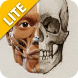 3D Anatomy for the Artist Lite