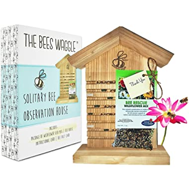 CRACK'N Special - Save $30 Now - Mason Bee House for Solitary Bees - Bonus Viewing Window, Wildflower Seeds, Guide - Wooden Beeblock Bee Home Nest to Attract Wild Native Bees to Garden - Great Gift