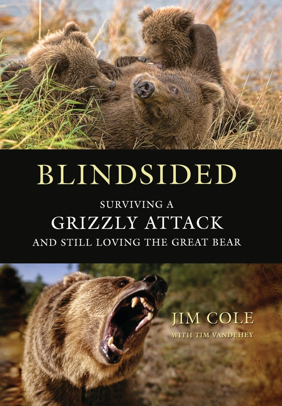 Download Blindsided: Surviving a Grizzly Attack and Still Loving the Great Bear ebook