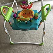 Amazon.com : Fisher-Price First Steps Jumperoo : Baby ...