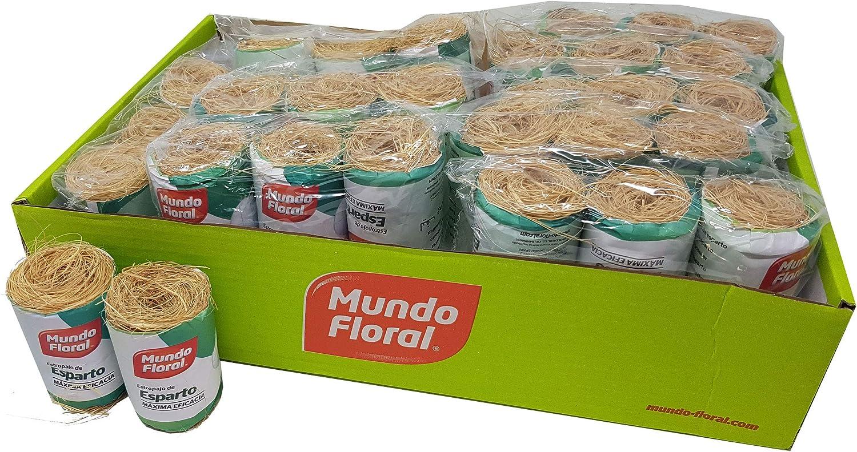 Estropajo ecológico natural de esparto. Pack 48 uds: Amazon.es ...
