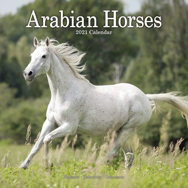 Arabian Horse Calendar   Calendars 2020   2021 Wall Calendars