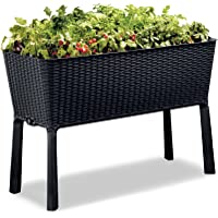 Keter 238699 Easy Grow Elevated Garden Bed, Anthracite