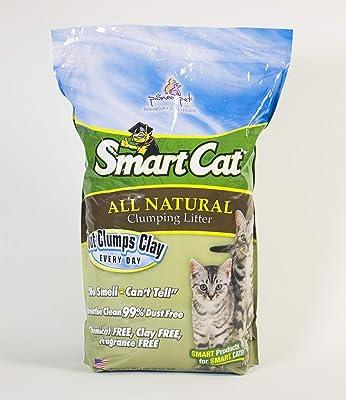Pioneer Pet SmartCat All Natural Kitten Litter