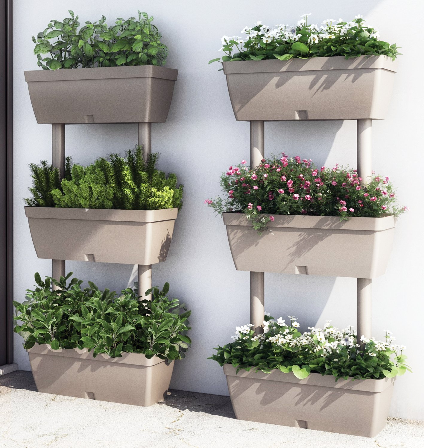 Alberi da vaso giardino mediterraneo for Vendita piante da giardino