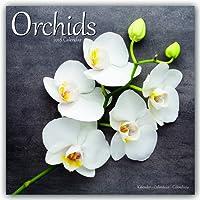 Garden Calendar - Flower Calendar - Orchids Calendar - Calendars 2017 - 2018 Wall Calendars - Orchids 16 Month Wall Calendar by Avonside