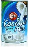 Double Horse Coconut Milk 400 ml