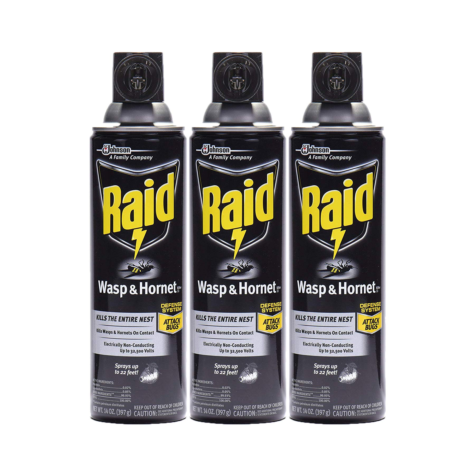 Raid Wasp & Hornet Killer Spray, 14 OZ (Pack - 3) by Raid