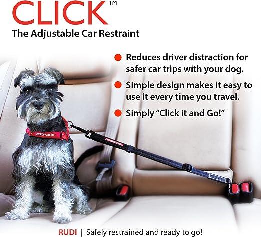 EzyDog Haga Clic – Mejor Perro cinturón de Seguridad Arnés de ...