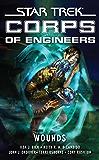 Star Trek: Corps of Engineers: Wounds: Star Trek Corps of Engineers (Star Trek: Starfleet Corps of Engineers Book 11)