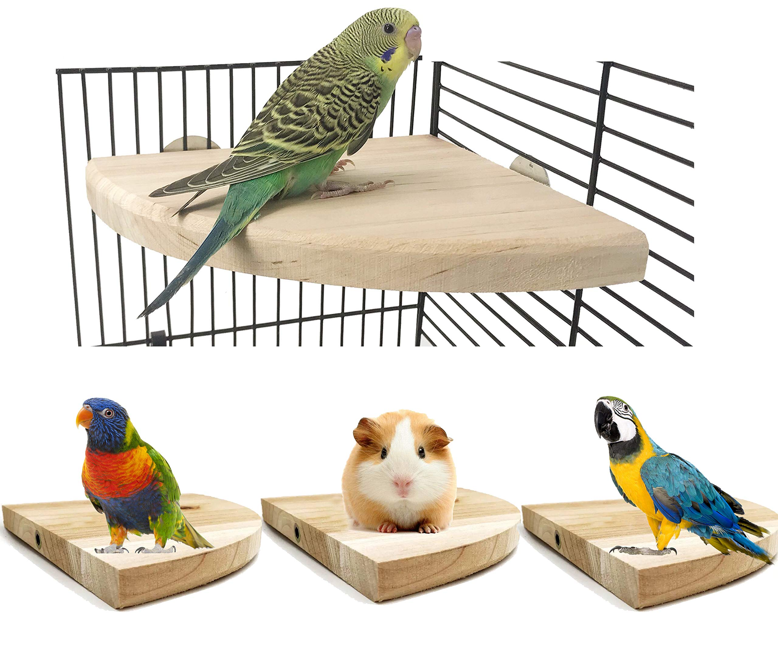 Woopets Wood Perch Bird Platform, Cage Accessories for Small Anminals Rat Hamster Gerbil Rat Mouse Lovebird Finches Conure Budgie Exercise Toy (7 inches) by Woopets