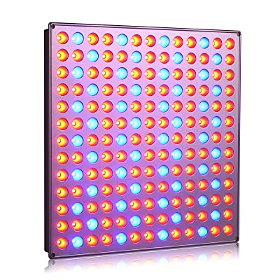 Roleandro 45W LED Grow Light for Flowering and Growing