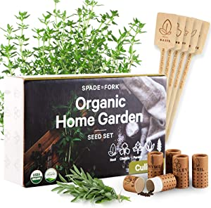 100% USDA Certified Organic Culinary Herb Seeds Collection - 5 Variety - Non GMO Basil, Cilantro, Parsley, Sage, Thyme - Indoor Outdoor Gourmet Herbal Garden Planting Kit
