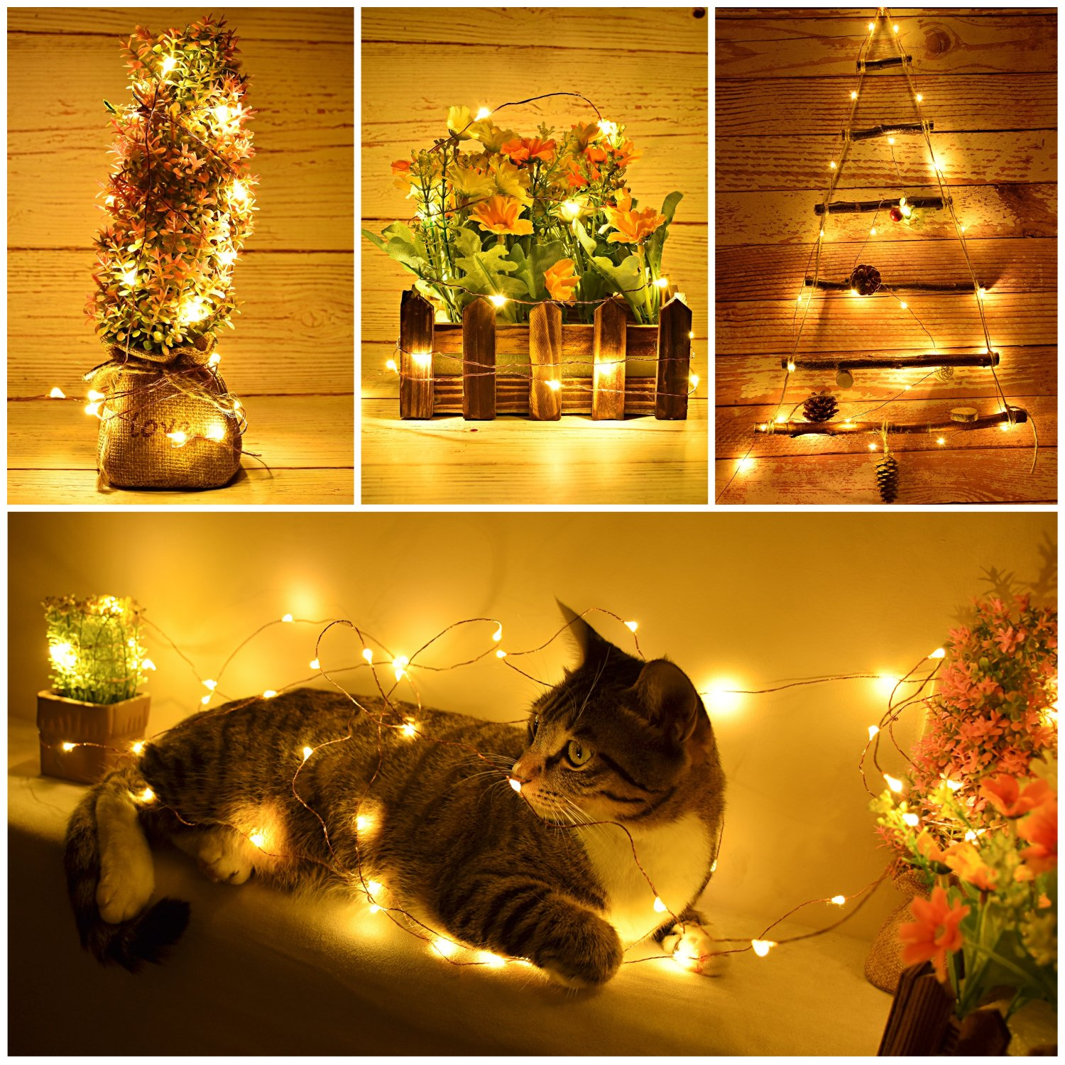 Amazon LED String Lights with remote control Dimmable and
