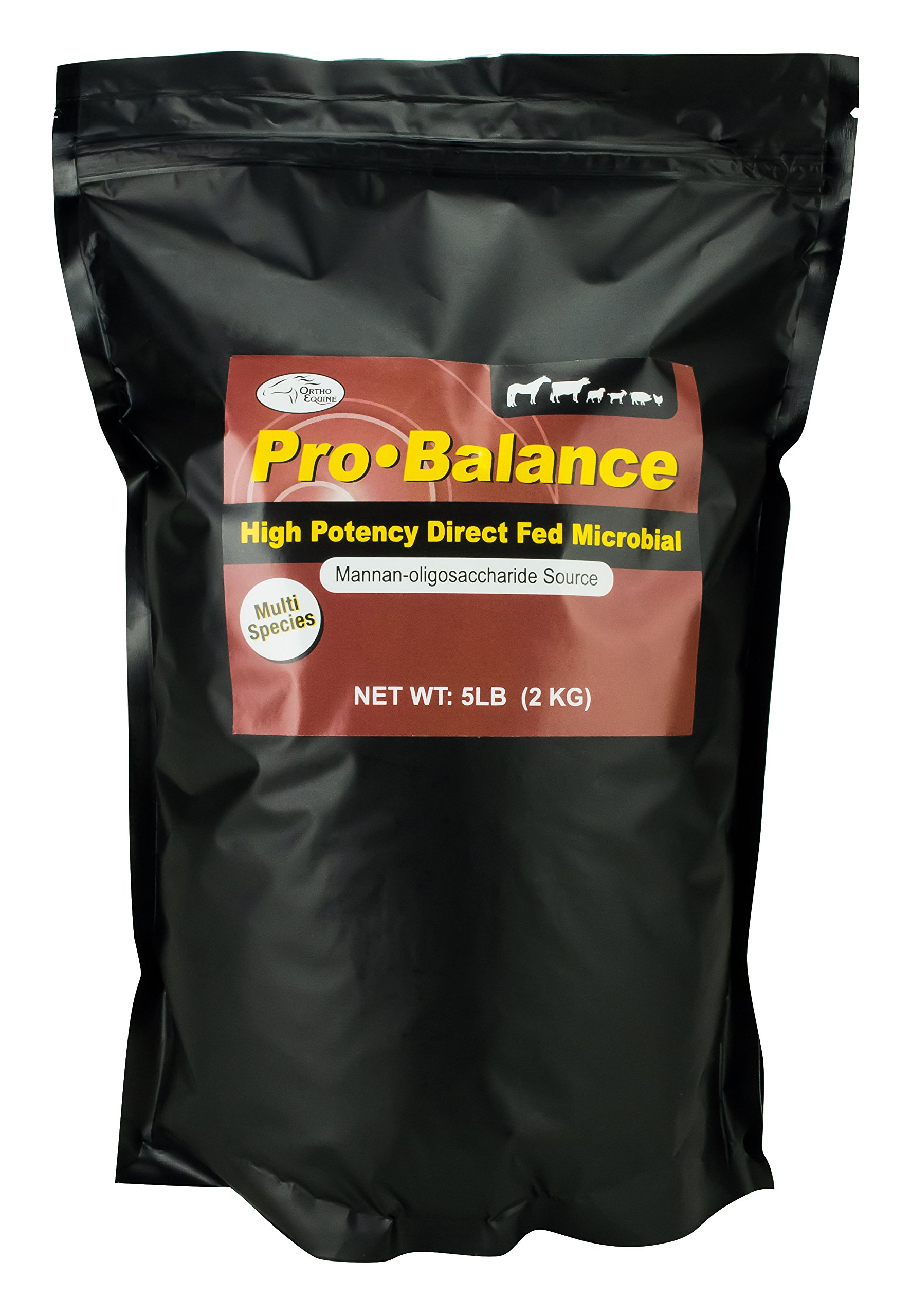 Ortho Equine Pro Balance Supplement, 5 lb by Orthofeet