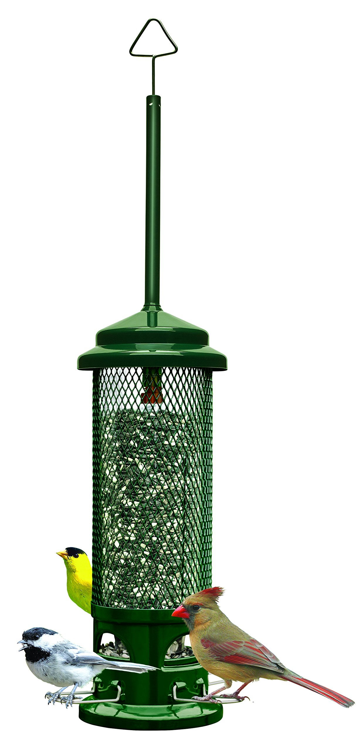 Squirrel Buster Legacy 5.5''x5.5''x24'' (w/hanger) Wild Bird Feeder with 4 Metal Perches, 2.6lb Seed Capacity
