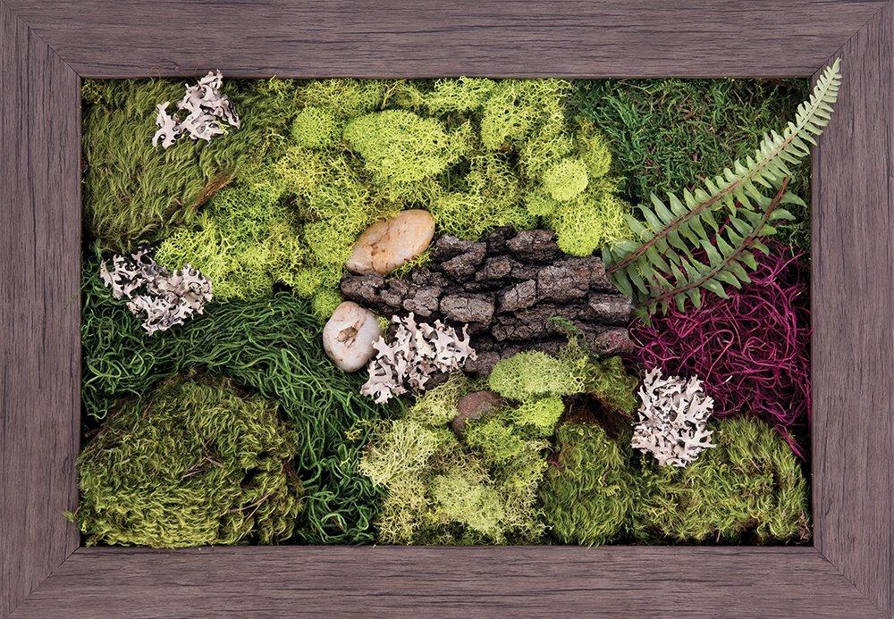 Carpentree 14''x20'' Garden Delight-Biophilic Framed Art