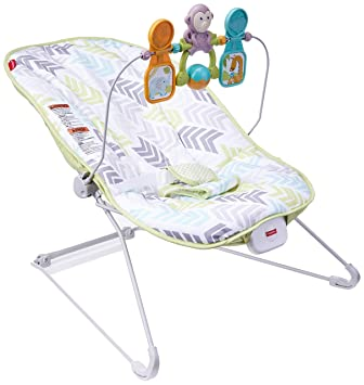 d9b44a5f2 Amazon.com   Fisher-Price Baby s Bouncer