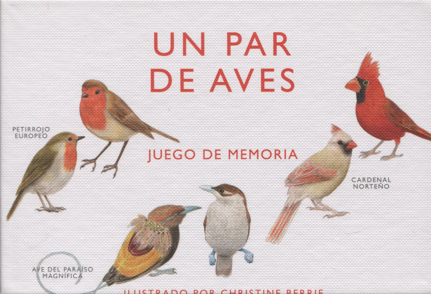 Un par de aves. Juego de memoria: Amazon.es: Christine Berrie, Christine Berrie: Libros