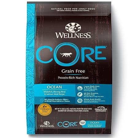 Wellness CORE Natural Grain Free Dry Dog Food, Ocean Whitefish, Herring Salmon, 12-Pound Bag