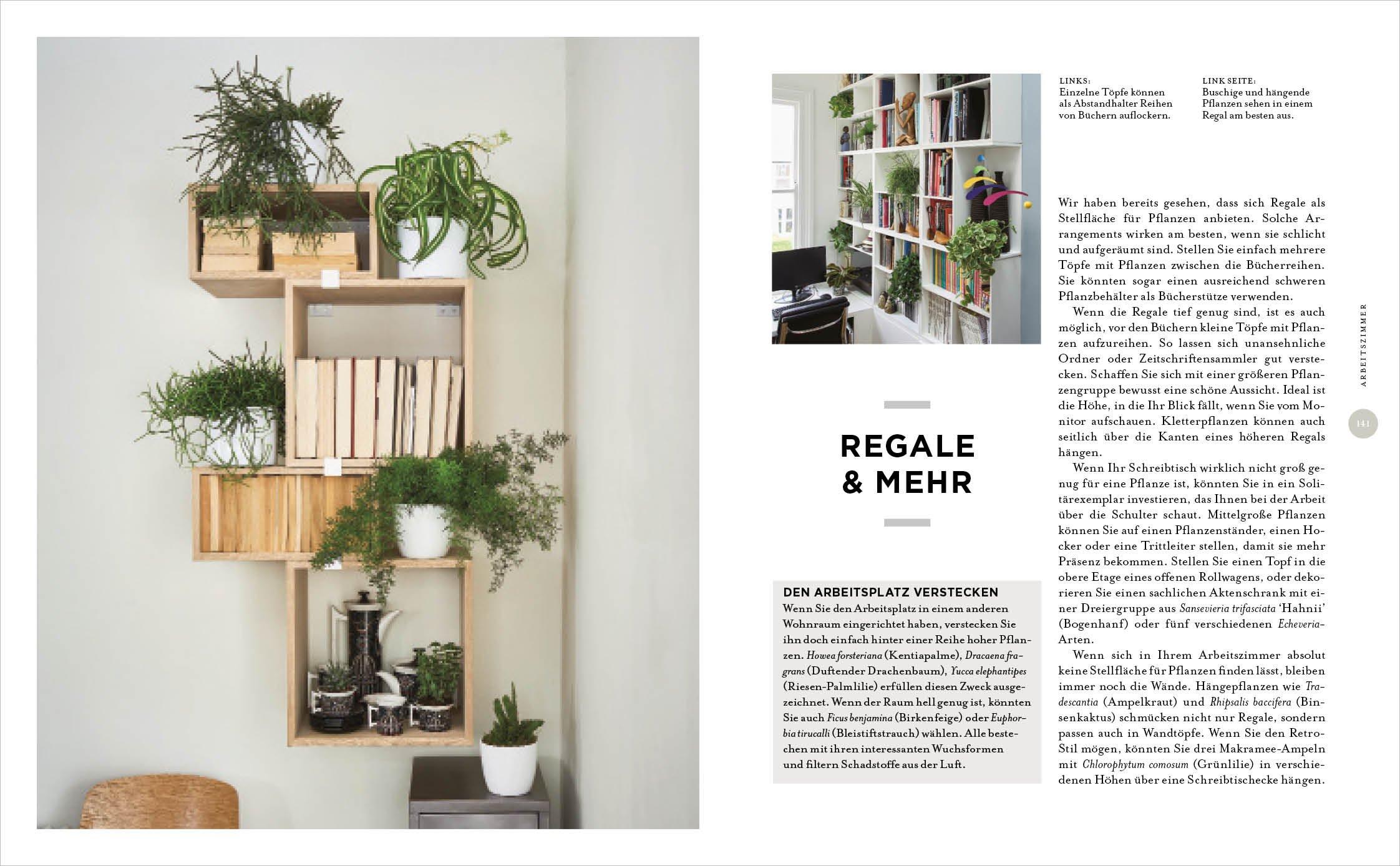 Schreibtisch Len zimmer mit pflanze kreative wohn ideen praktische tipps amazon