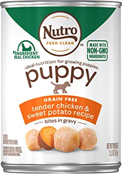 Nutro Puppy Wet Dog Food for Large Breeds