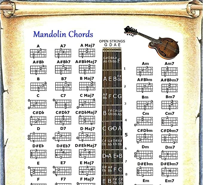 Amazon Mandolin Chords Poster Note Locator Chart Musical