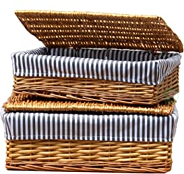 Vintiquewise(TM) Lined Storage Baskets with Lid (Set of 2)