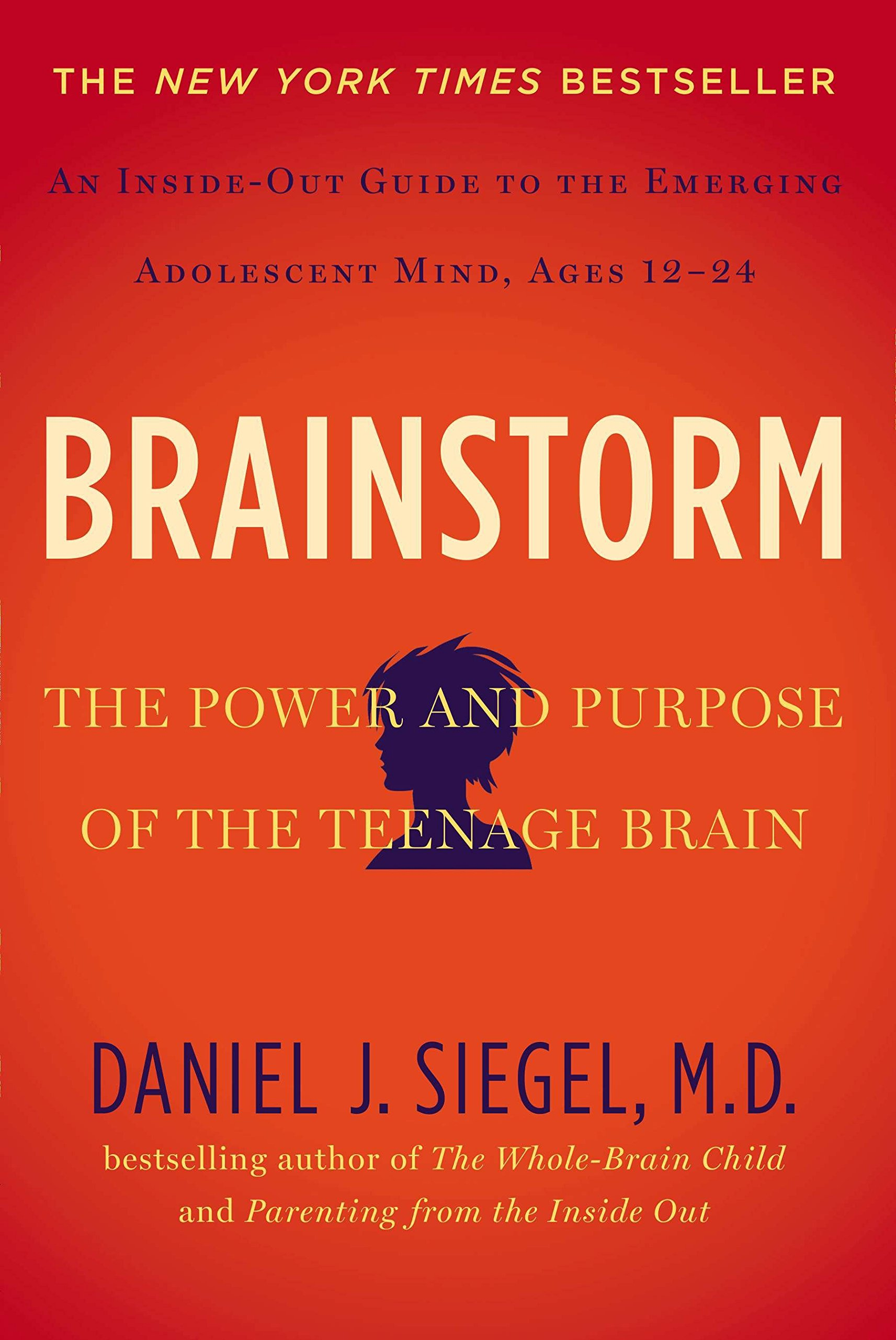 Image result for brainstorm siegel