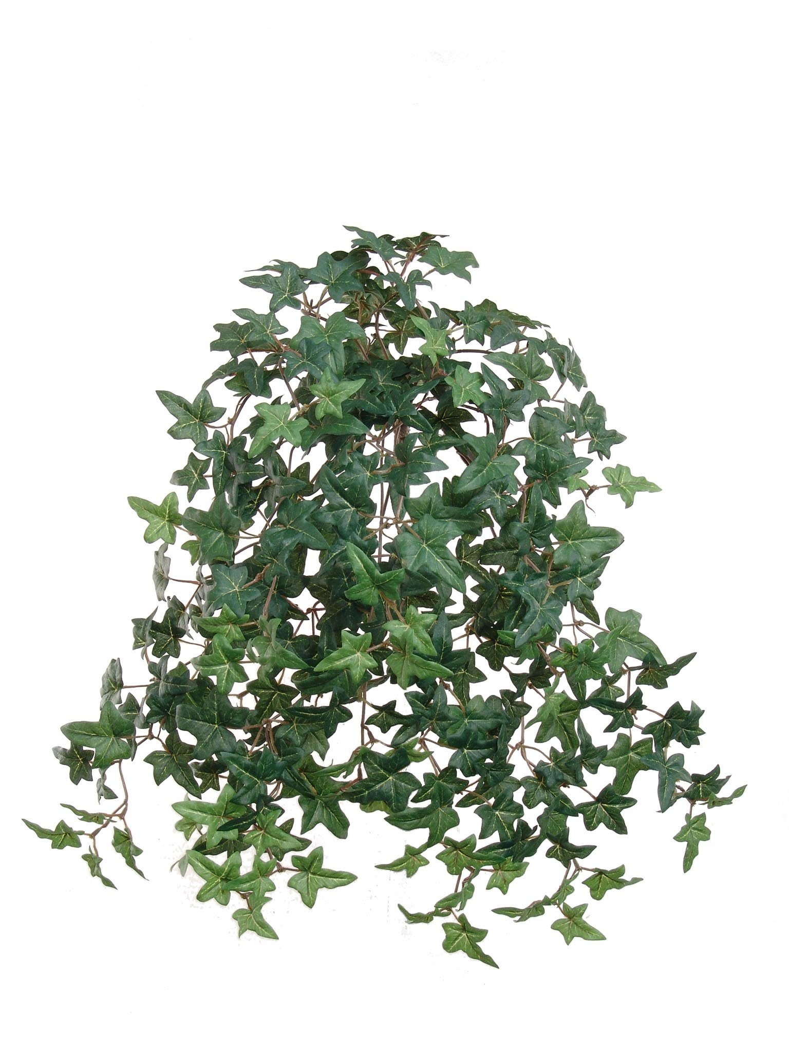 Larksilk 20'' Artificial English Ivy Plant 12-Pack - 12 Small Artificial Plants with Silk Greenery Faux Ivy Vines - 12 Artificial Ivy Plants with 274 Fake Ivy Leaves Each by Larksilk