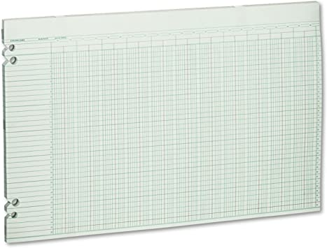 WLJG3010 Wilson Jones Accounting Sheets