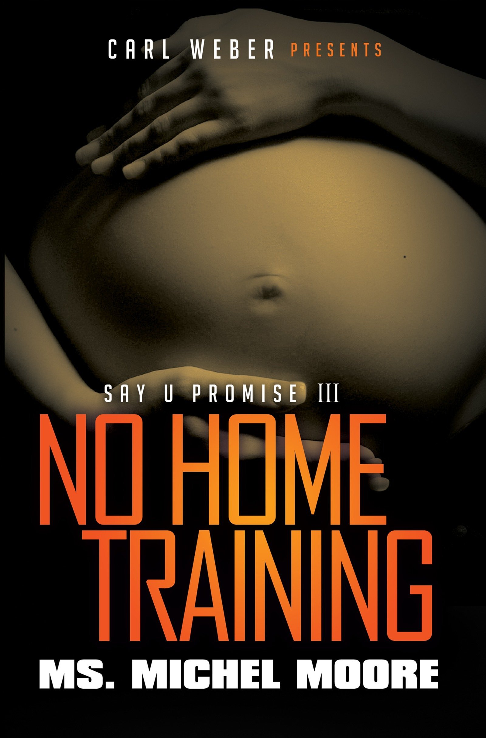Download No Home Training: Say U Promise III PDF