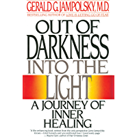 Out of Darkness into the Light: A Journey of Inner Healing (English Edition)