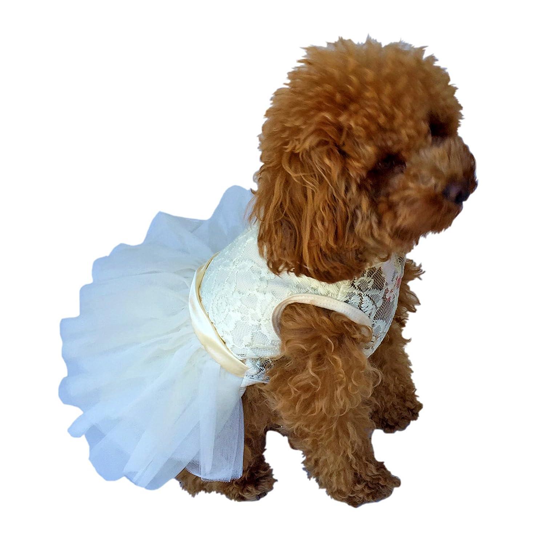 The Dog Squad Die Fufu Tutu Kleid, klein, Elfenbeinfarben