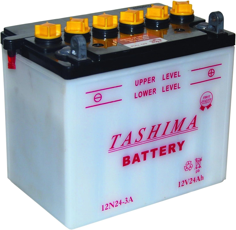 Greenstar 3508 Batterie 12n24.3a f640 Noir