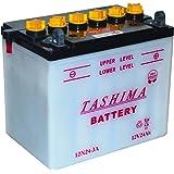 Greenstar 3508 Batterie 12 V 24 A 12N24.3A