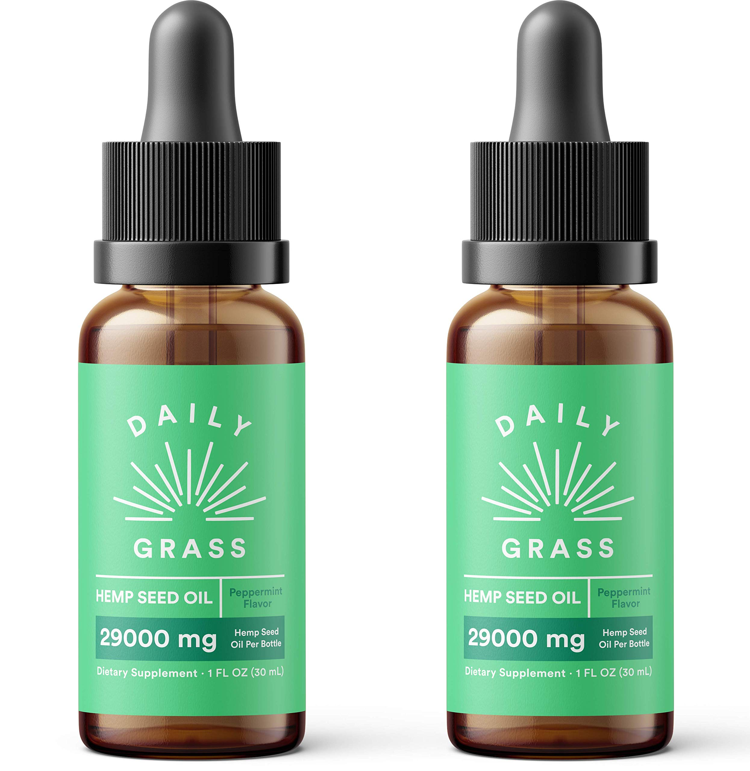 (2-Pack) Pure Hemp Oil Extract for Pain & Stress Relief - 29000mg of Organic Hemp Extract - Grown & Made in USA - 100% Natural Tincture Hemp Drops for Humans & Dogs - Helps with Sleep, Skin & Hair by FLYBY