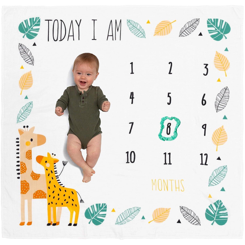 "Organic Baby Monthly Milestone Blanket Giraffe - Today I Am Photo Month Blanket for Newborn to 12 Months Milestones, Baby Boy Girl Unisex Growth Pictures, Safari Giraffes, 47""x47"""