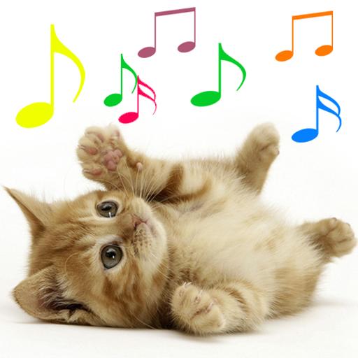 sons de miados de gatos