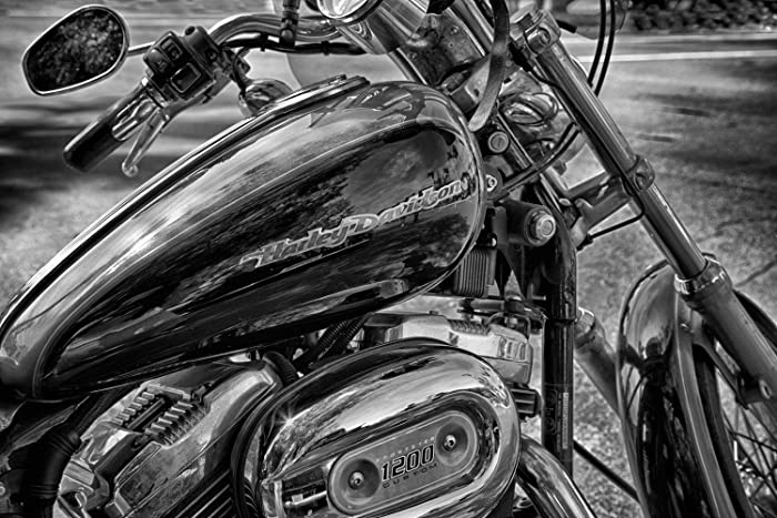2a785b638b Image Unavailable. Image not available for. Color: Harley Davidson Wall  Print, Motorcycle Gift For Men ...